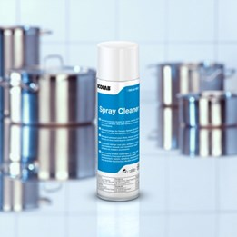 Rengöring Ecolab Spray Cleaner 500ml
